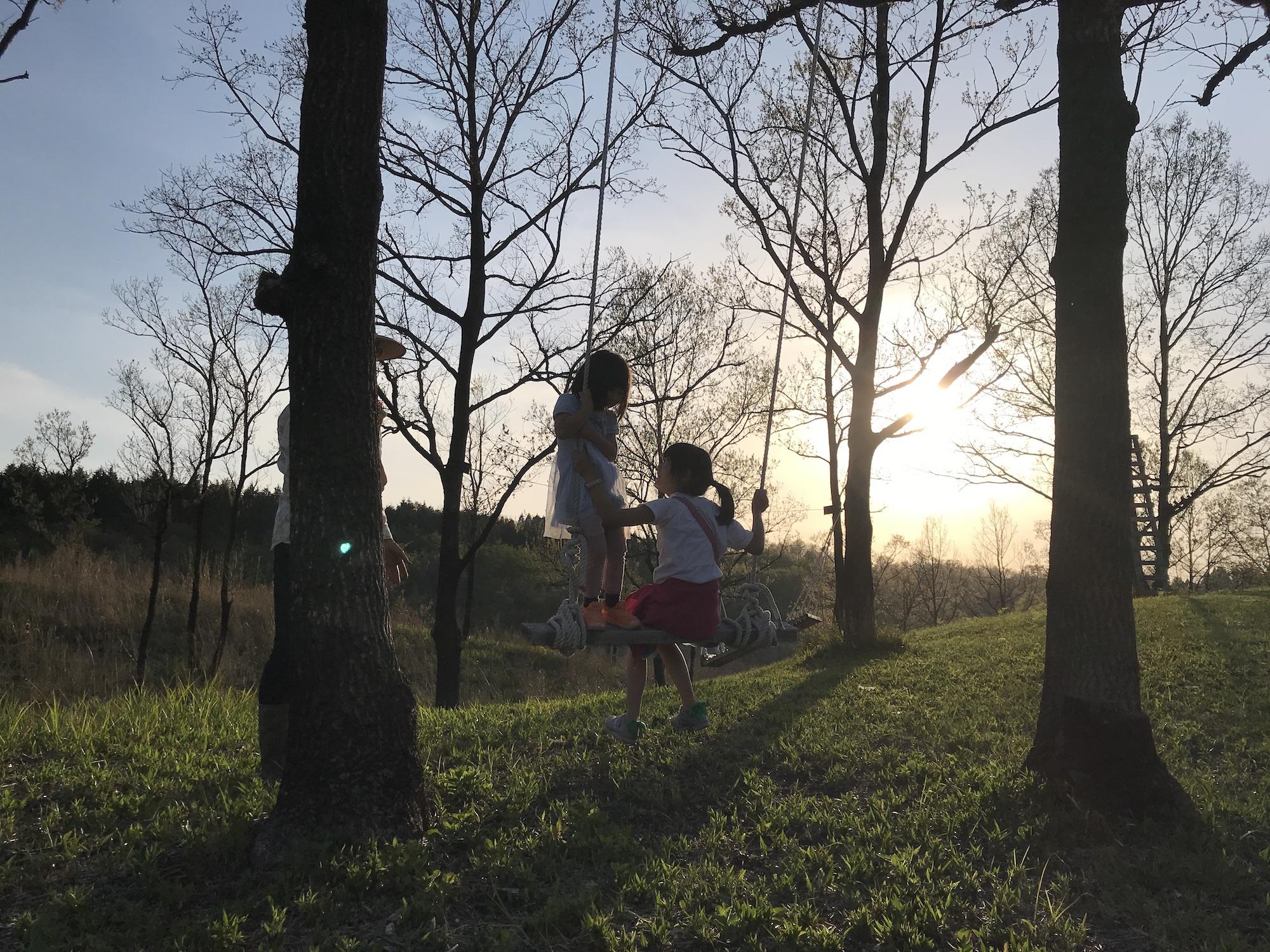 お手製のブランコに乗る二人の女の子が夕日に照らされている。