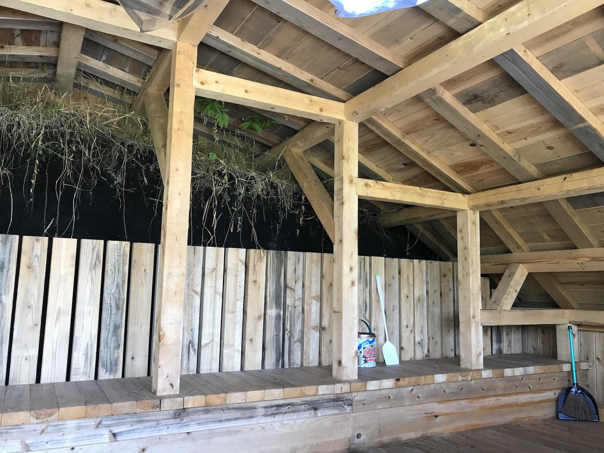 横穴式おうちの中。ラウンドした木の天井と板間。壁は木の上に土肌が見えている。